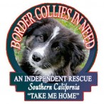 Border Collies in Need