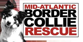 Mid-Atlantic Border Collie Rescue