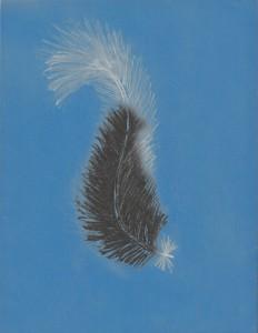 featherfordru